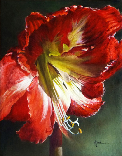"""""""My Amaryllis in Full Morning Glory"""" Oil on Canvas, 10"""" x 8""""by artist Mary Dove. See her portfolio by visiting www.ArtsyShark.com"""