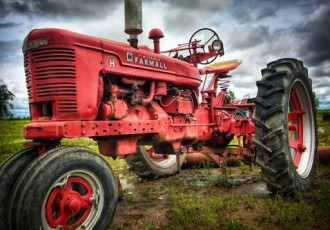 The Ox - tractor photo