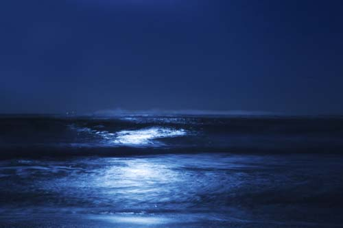 """Blue Moonlight"" Archival Photograph mounted on Plexiglas, ed. of 10, 30"" x 45"" by artist Cheryl Maeder. See her portfolio by visiting www.ArtsyShark.com"