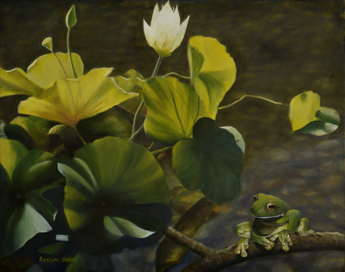 """Water Lily and Frog Study"" Oil on Canvas, 50cm x 40cm by artist Roslyn Oakes. See her portfolio by visiting www.ArtsyShark.com"
