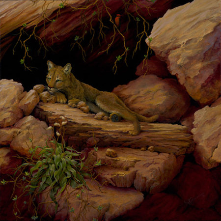 """Who Goes There?"" Oil on Canvas, 20"" x 20""by artist Muriel Timmons. See her portfolio by visiting www.ArtsyShark.com"