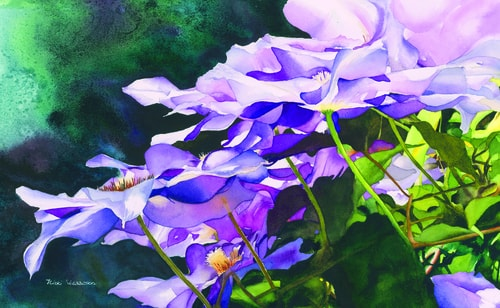 """Cascading Clematis"" Watercolor, 10"" x 16"" by artist Nicki Isaacson. See her portfolio by visiting www.ArtsyShark.com"