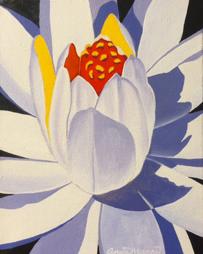 """White Water Lily"" Acrylic on Canvas, 8"" x 10"" by artist Anita Marci. See her portfolio by visiting www.ArtsyShark.com"