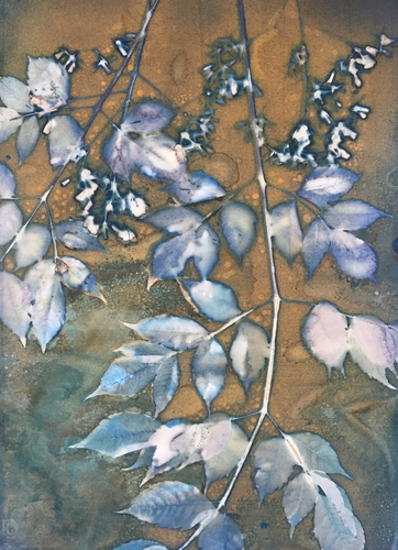 """Spring in the Alley 2"" Cyanotype, 11"" x 15"" by artist Linda Clark Johnson. See her portfolio by visiting www.ArtsyShark.com"