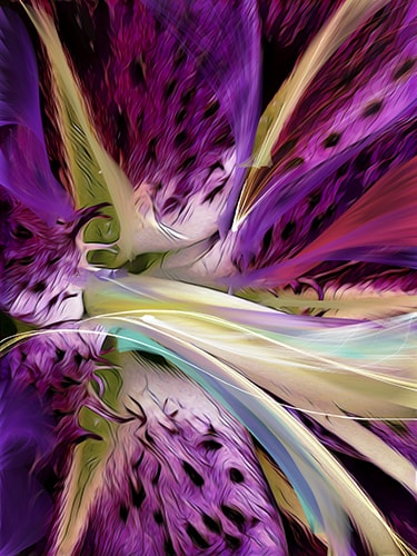 Abstract digital photography image of fuschia and lilacs by Cindy Greenstein