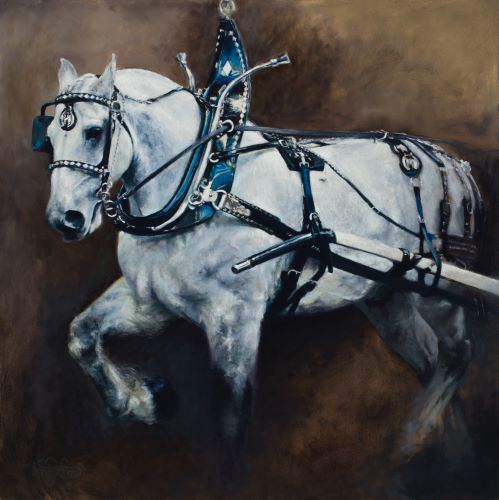 painting of a white draft horse in harness by Shandy Staab